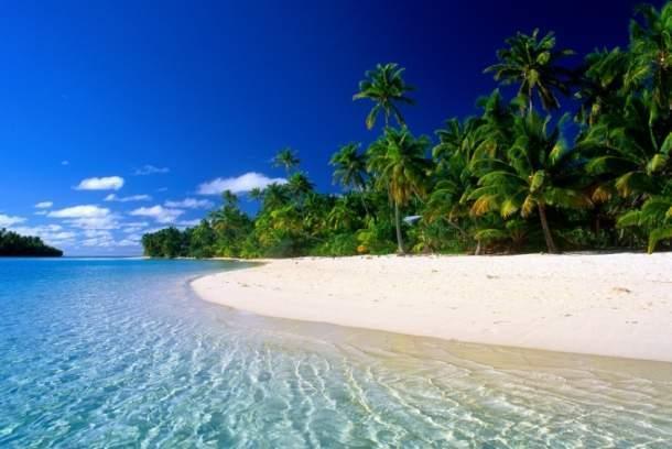 Канарские острова - это идеальный теплый климат для отдыха в любое время года
