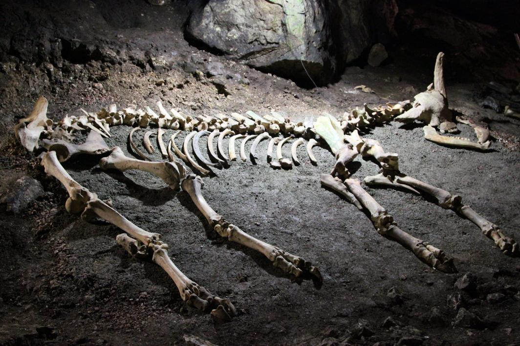 Мамонтова пещера в Крыму