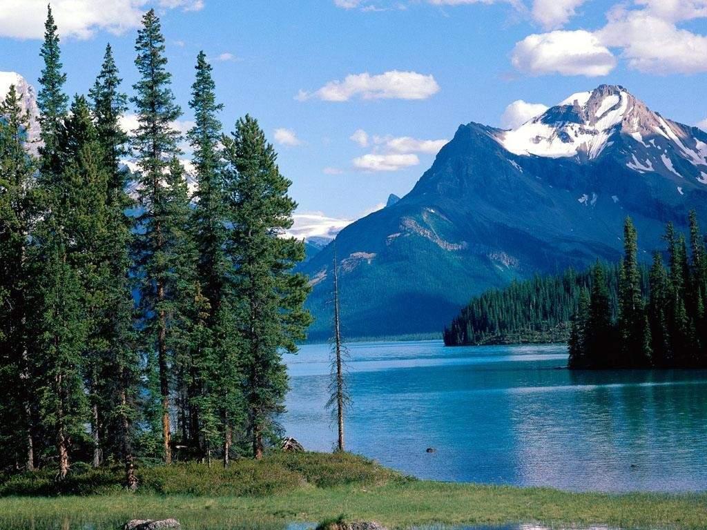 Канадская природа очень похожа на российскую, и это неудивительно: обе страны расположены на севере своих континентов