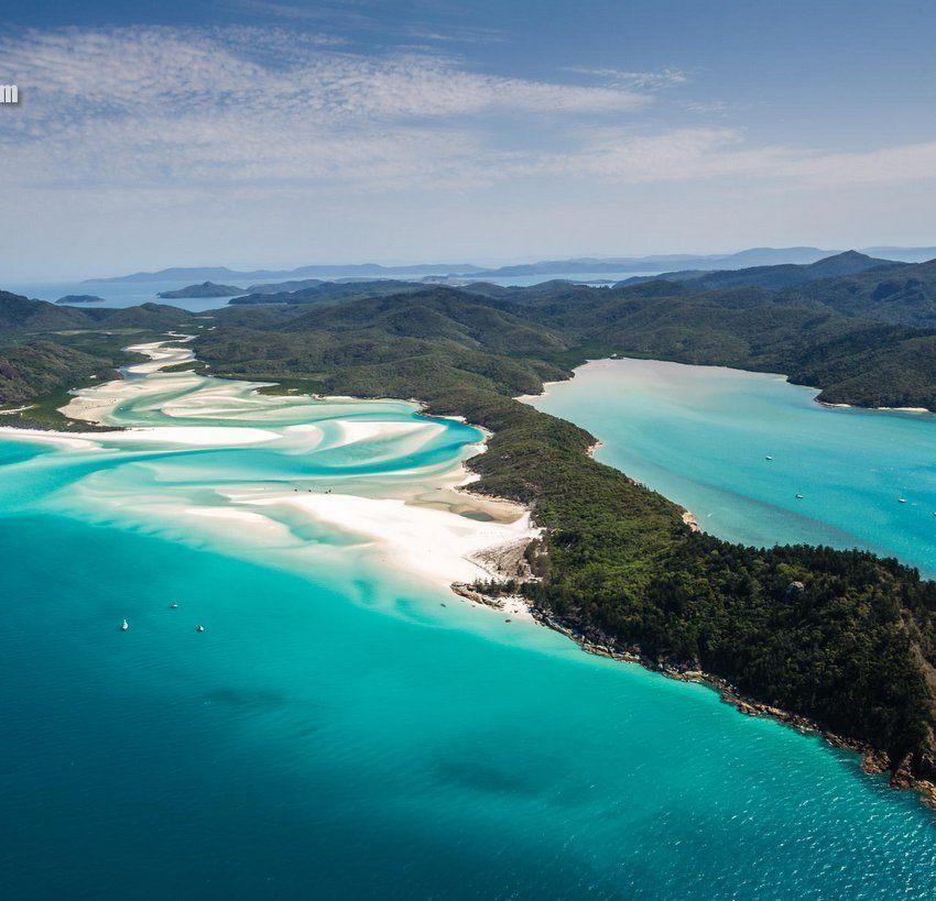 именно благодаря таким видам, пляжи Австралии посещают десятки тысяч туристов ежегодно